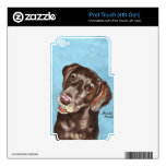 German Shorthair Pointer Decals For iPod Touch 4G