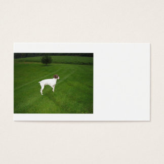 german shorthair pointer full.png business card