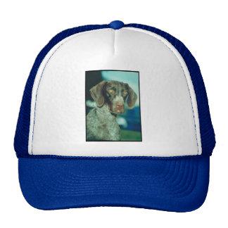 German Shorthair Pointer Mesh Hats