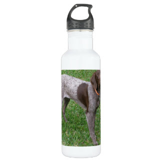 German Shorthaired Pointer 24oz Water Bottle