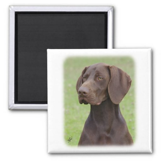 German Shorthaired Pointer AA004D-019 Magnets