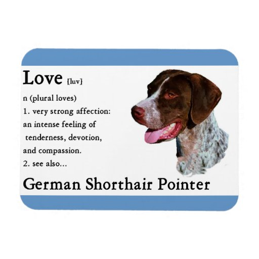 German Shorthaired Pointer Art Love Is Rectangle Magnets