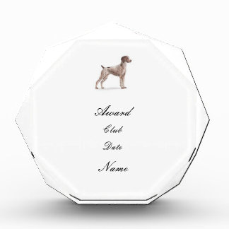 German Shorthaired Pointer Award