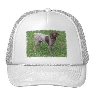 German Shorthaired Pointer Baseball Hat