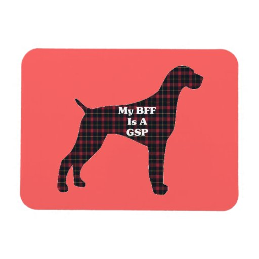 GERMAN SHORTHAIRED POINTER BFF MAGNET