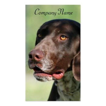German Shorthaired Pointer Business Cards