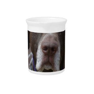 German Shorthaired Pointer Dog Beverage Pitcher