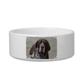 German Shorthaired Pointer Dog Bowl