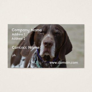 German Shorthaired Pointer Dog Business Card