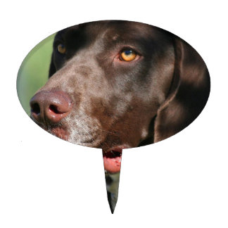 german shorthaired pointer wedding cake topper dogs cake toppers zazzle 14674