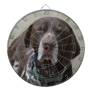 German Shorthaired Pointer Dog Dartboard With Darts