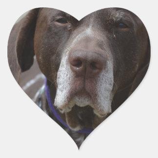 German Shorthaired Pointer Dog Heart Sticker