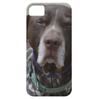 German Shorthaired Pointer Dog iPhone SE/5/5s Case