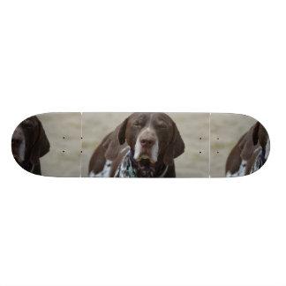 German Shorthaired Pointer Dog Skateboard Deck