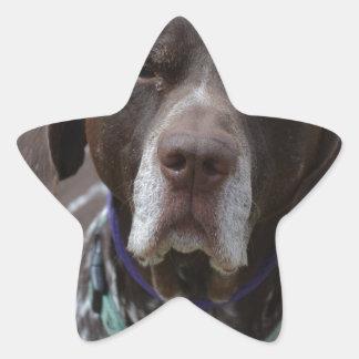 German Shorthaired Pointer Dog Star Sticker
