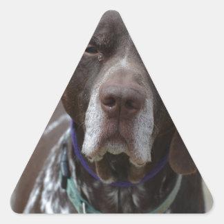 German Shorthaired Pointer Dog Triangle Sticker