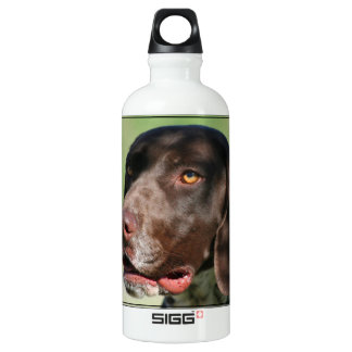 German Shorthaired pointer dog Water Bottle