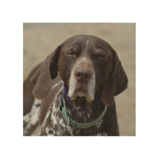 German Shorthaired Pointer Dog Wood Wall Art
