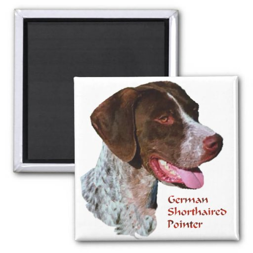 German Shorthaired Pointer Gifts Refrigerator Magnet
