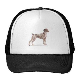 German Shorthaired Pointer Hats