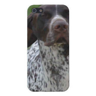 German Shorthaired Pointer iPhone 5/5S Case