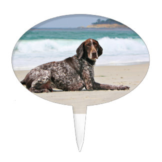 german shorthaired pointer wedding cake topper german shorthaired pointer cake toppers zazzle 14674