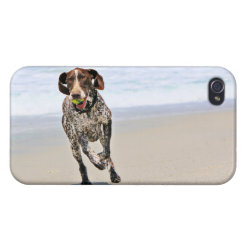Case Savvy iPhone 4 Matte Finish Case with German Shorthaired Phone Cases design