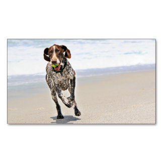 German Shorthaired Pointer - Luke - Riley Magnetic Business Card