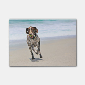 German Shorthaired Pointer - Luke - Riley Post-it® Notes