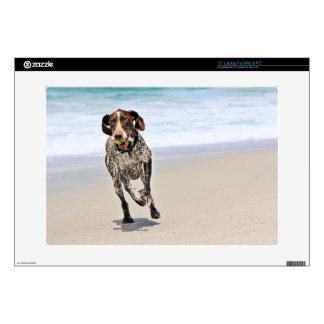 German Shorthaired Pointer - Luke - Riley Skin For Laptop
