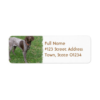 German Shorthaired Pointer Mailing Label