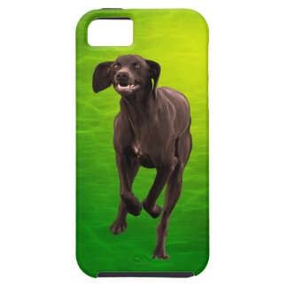 German Shorthaired Pointer Pet-lover iPhone 5 Covers