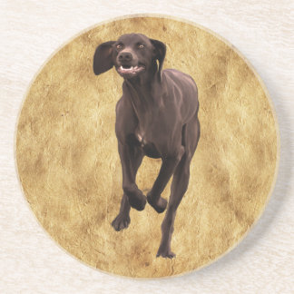 German Shorthaired Pointer Pet-lover Coaster