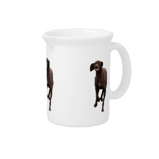German Shorthaired Pointer Pet-lover Drink Pitcher