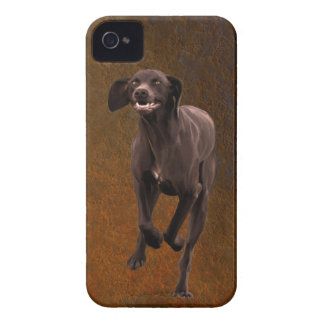 German Shorthaired Pointer Pet-lover iPhone 4 Cover
