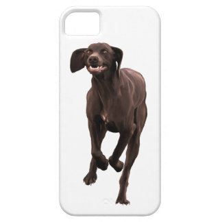 German Shorthaired Pointer Pet-lover iPhone SE/5/5s Case