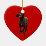 German Shorthaired Pointer Pet-lover Christmas Tree Ornament
