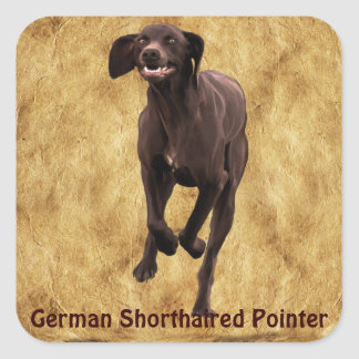 German Shorthaired Pointer Pet-lover Square Sticker