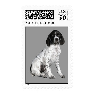 German Shorthaired Pointer Puppy Postage Stamp