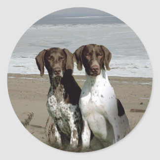 German Shorthaired Pointer Sticker