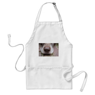 German shorthaired pointers nose adult apron