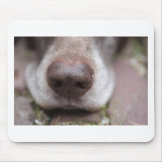 German shorthaired pointers nose mouse pad