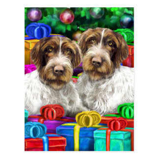 German WH Pointer Open Gifts Christmas Postcard