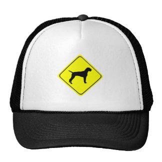 German Wired-Haired Pointer Dog Crossing Sign Trucker Hat