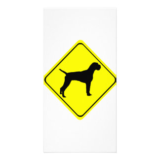 German Wired-Haired Pointer Dog Crossing Sign Customized Photo Card