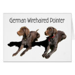 German Wirehaired Pointer Card