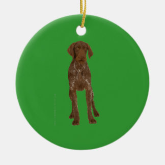 German Wirehaired Pointer Ornament