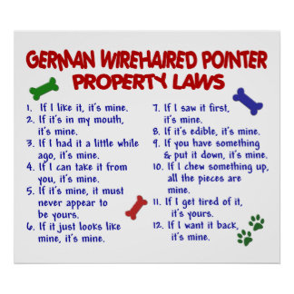 GERMAN WIREHAIRED POINTER PL2 POSTER