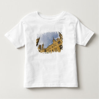 Germany, Baden-Wurttemberg, Hechingen (Area) Toddler T-shirt