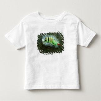 Germany, Baltic Sea, Island of Ruegen. Jasmund Toddler T-shirt